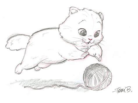 big fluffy kitten  tombancroft  deviantart