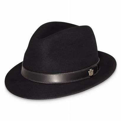 Hat Transparent Fedora Background Hats Pngimg