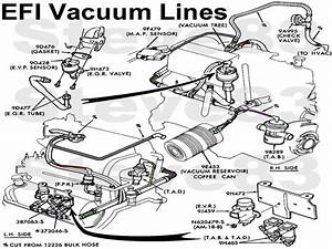 Vacuum Line Diagram For 1989 Ford Mustang 5 0