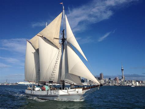 Scow Auckland by Auckland Region Trip Planner