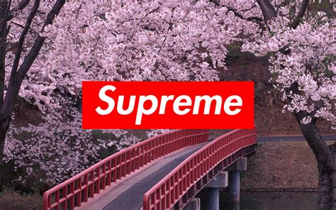 the supreme supreme background 183 free backgrounds for