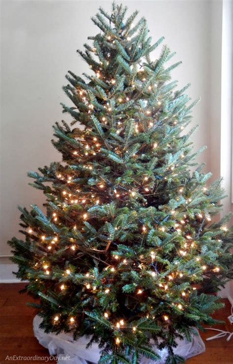 unique ways to decorate a nautical christmas tree an