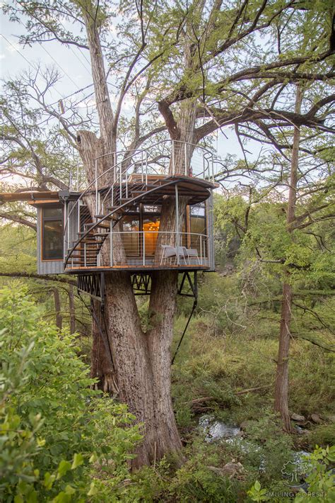 House In Tree by Spend The In A Luxury Treehouse Outside