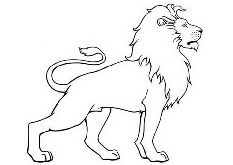 coloring activities books  coloring pages