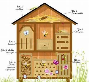 Abri à Insectes : construire un h tel insectes parc naturel r gional de ~ Premium-room.com Idées de Décoration