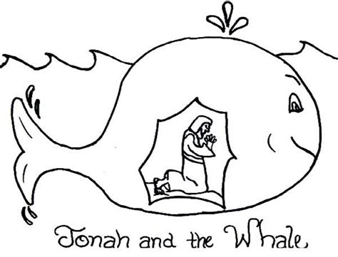 story  jonah   whale coloring page yons aalyh