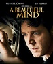 Movie Summary: A Beautiful Mind - John Nash's Praised And ...