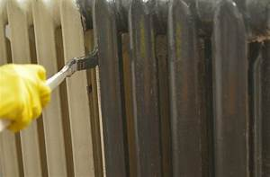Brosse Pour Nettoyer Radiateur : pinceau queue de radiateur caract ristiques entretien ~ Premium-room.com Idées de Décoration