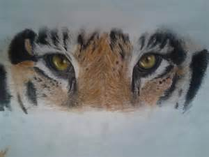 Tiger Eye Drawing Sketches