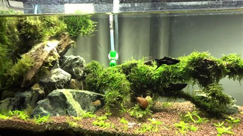 Waterfall Aquascape by Diy Aquascape Quot Waterfall Quot