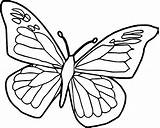 Coloring Butterfly Pages Cycle Caterpillar Popular Cartoon sketch template
