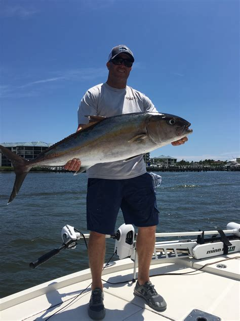 Will Harrison With A Nice Amberjack Caught Out Of Ponce