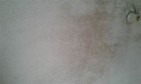 remove ceiling mold  pictures wikihow
