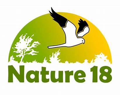 Nature Devise Nouvelle Nouveau Transparent Channel Iptv