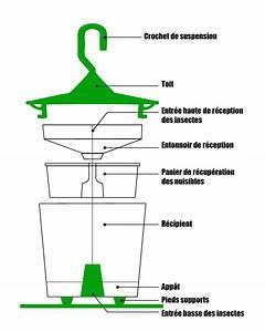 Piege A Frelon : piege a frelons asiatiques easy trap detail du piege ~ Farleysfitness.com Idées de Décoration