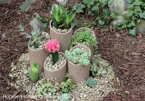 how to build and plant a succulent garden hometalk
