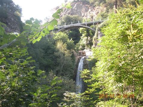 Botanischer Garten Tiflis by At Tbilisi Botanical Garden Picture Of National