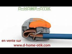 Domino Electrique Wago : wago la connectique facile pratique et surtout garantie ~ Melissatoandfro.com Idées de Décoration