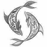 Trout Drawing Dolphin Tattoo Coloring Shark Whale Zentangle Drawings Clipartmag Detailed Printable Delfines Colouring Tatuajes sketch template