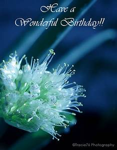 Sending You Birthday Wishes Free Flowers ECards Greeting Cards 123 Greetings