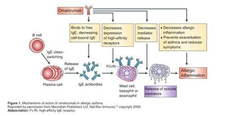 Cytotec Effect Albuterol Proventil Mechanism Of Action Sevrage Prozac Avis