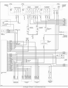 Diagram Bmw E53 Ac Wiring Diagram Full Version Hd Quality Wiring Diagram Diagramrochad Portaimprese It