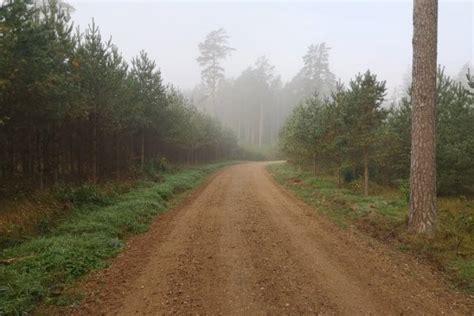 LVM fiksē meža ceļu būvniecības gaitu elektroniski - LV ...