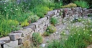 Pflanzen Für Trockenmauer : naturgarten gestalten mein sch ner garten ~ Orissabook.com Haus und Dekorationen