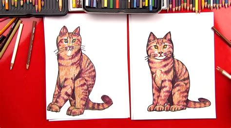 draw  realistic cat art  kids hub
