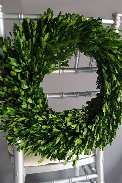 natural preserved  boxwood wreath
