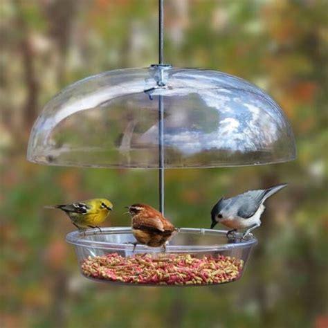 bountiful bowl feedertm coles wild bird feed