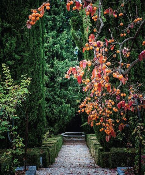 renaissance italian garden my paradissi