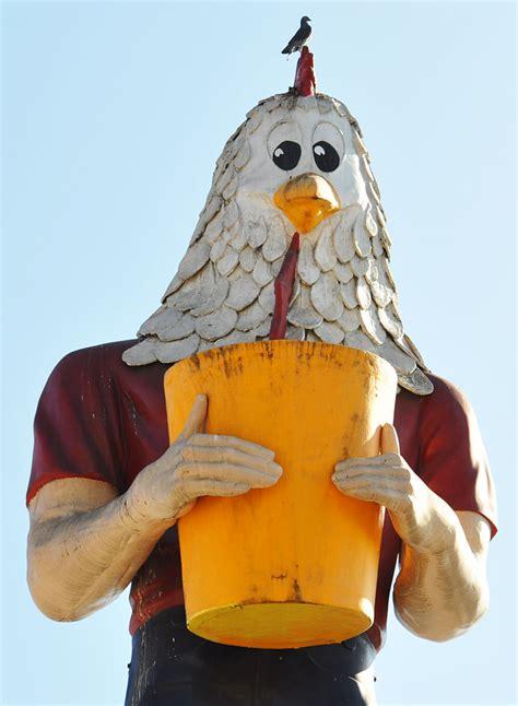 chicken boys day   printable  calendar