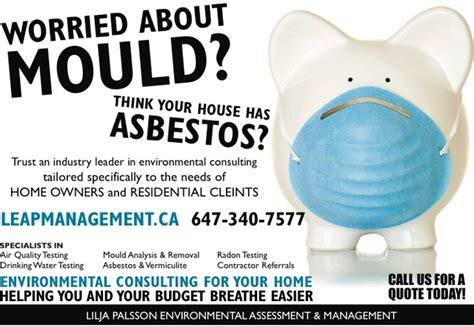 leap management  asbestos lead removal  toronto