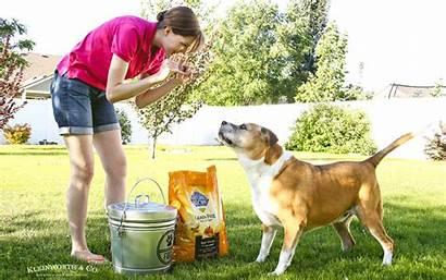 Dog Storage Galvanized Container Happy