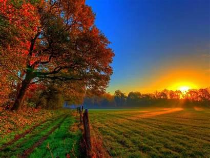 Scenery Sunset Autumn Trees Field Zonsondergang Herfst