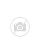 Ivanka Trump Under Fire for Posting Photo of Her Kids With Exotic ...