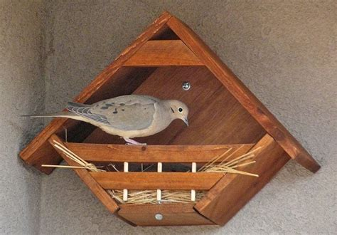 dove nesting nook bird houses bird house plans bird house kits