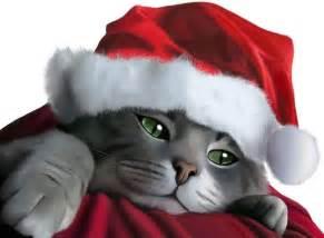 cat santa hat cat in a santa hat by sylaskayne on deviantart