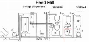 Schematic Diagram Of A Feed