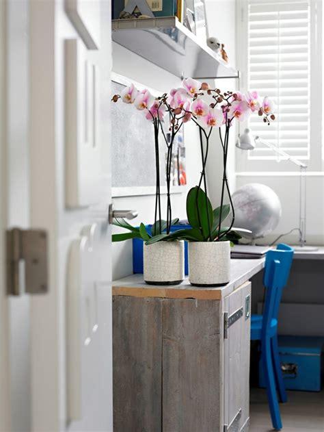 objet deco chambre idées originales de décoration avec des orchidées