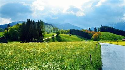Scenery Flowers Houses Grass Forests Roads Woods