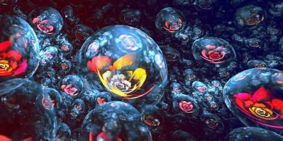 Abstract 3d Fractal Digital Flowers Apophysis Space