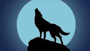 Lobo aullando (Efecto de Sonido) Wolf Howling in Night Sound Effect YouTube