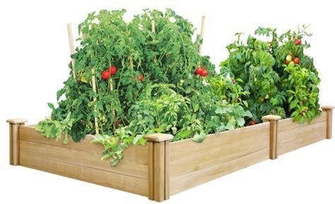 cedar raised garden bed fresh garden decor
