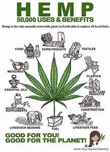 Research Paper Marijuana introduction to creative writing ntu que veut dire do your homework en anglais homework help cpm 6th grade