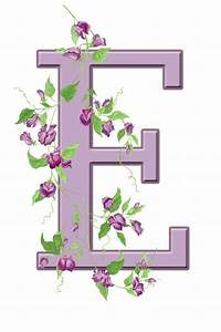 Letter E Floral Initial Free Stock Photo - Public Domain ...