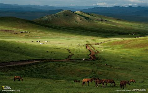 horses mongolian steppe-national geographic best ...