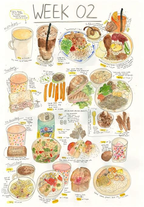 illustration cuisine food illustrations illustrated recipe diet food food