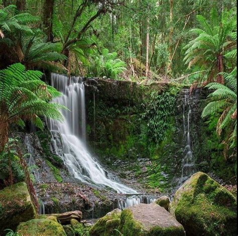 tropical waterfall images hd wallpaper
